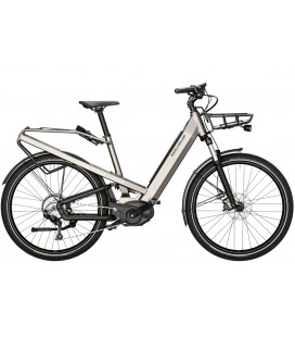 Riese & Muller Homage Culture GT touring